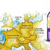 Part 1: One Best Type of Wine From Each of 6 Winemaking Countries