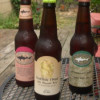Comparing the Dogfish Head IPA's
