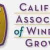 California grape crush down slightly in 2010