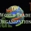 Wine, Women, and the WTO