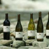 New Zealand Winemakers join forces to tackle US market