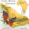 The almost-great grapes of South Africa