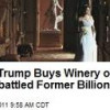 Oh no. Donald Trump Buys Kluge Winery