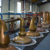 Scotland Awards Contracts to Make Electricity from Whiskey