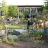 Stone Brewing may serve beer, food in Kit Carson Park