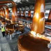 Distillers cut carbon bill by turning whisky by-products into energy