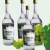 Passionate About Pisco
