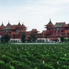 Chinese buy their favourite Bordeaux by the vineyard