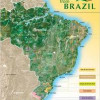 Brazil protects its … wines?