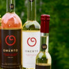 Tomato wine thriving in Canada