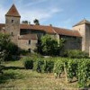 Chinese Buyer of Burgundy Château Named