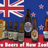 Two Epic Weeks in Brew Zealand – Part I: The Beer Industry
