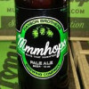 Hanson launches beer brand: Mmmhops. Who's Hanson?