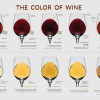 What Different Wine Colors Mean