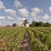 Cheap Travel: Bordeaux Wineries Come To Google Street View