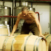 Golan Heights: Making Wine in the Shadow of War