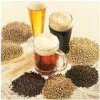 Craft Beer Uses 4 Times As Much Barley As Corporate Brew