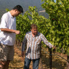 Poor Yao Ming Uses Crowdfunder to Raise $$$ For Napa Winery