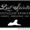Lost Spirits Disruptive Technology: Spirits Age 20 Yrs in 6 Days