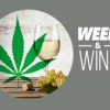 Which Wine Should You Pair With Your Weed?