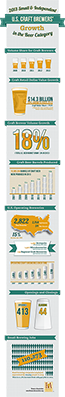 2013 Growth Infographic
