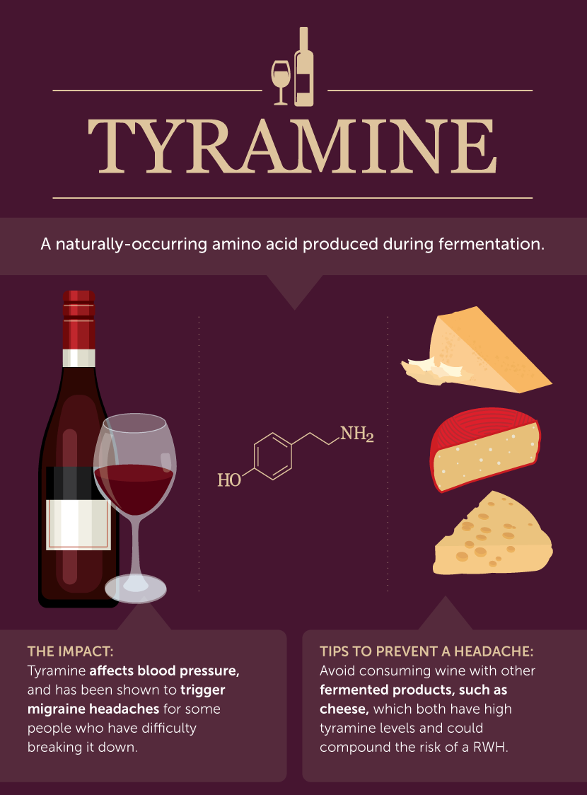 How Tyramine Contributes to Red Wine Headaches - What Causes Red Wine Headaches?